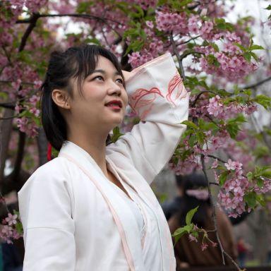 2019-03-17 顾村公园樱花 门票自费_摄影师诗星的返片