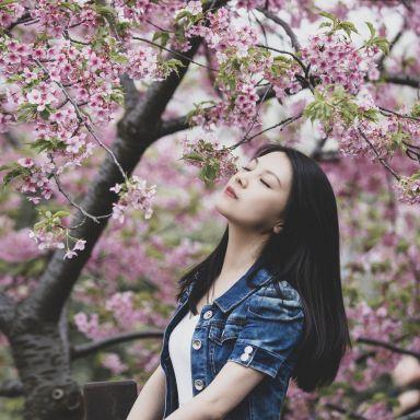 2019-03-16 顾村公园樱花摄影_摄影师周末的返片