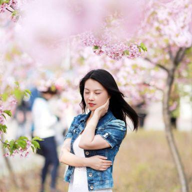 2019-03-16 顾村公园樱花摄影_摄影师跳跳虫的返片