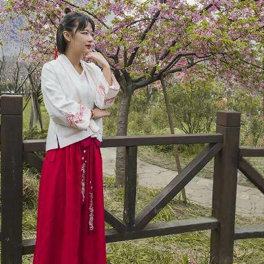 2019-03-17 顾村公园樱花_摄影师老猫ding的返片